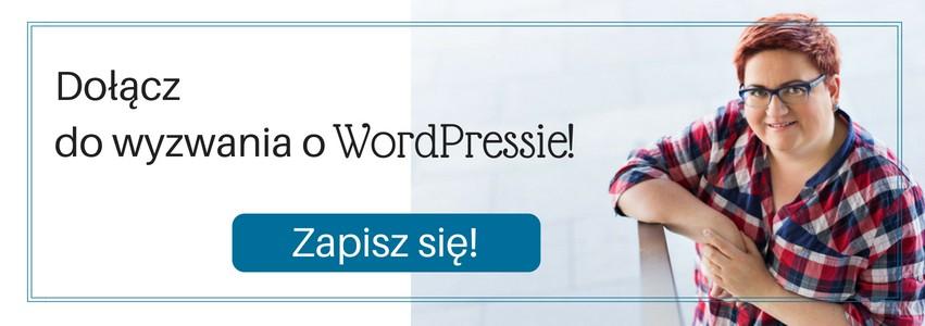 Kup książkę o WordPressie mojego autorstwa!